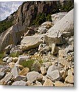 Yosemite Rockslide Metal Print