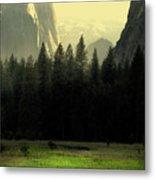 Yosemite Valley Golden . Vertical Metal Print