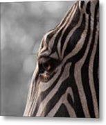 Zebra I Metal Print