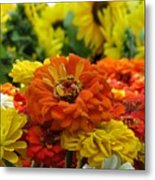 Zinnias With Sunflowers Metal Print
