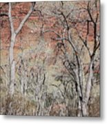 Zion At Kayenta Trail Metal Print by Viktor Savchenko