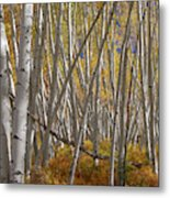 Colorful Stick Forest Metal Print