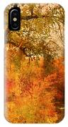 Autumn Pathways IPhone Case