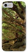 Branches And Roots IPhone Case