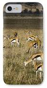 Herd Of Antelope IPhone Case by Darcy Michaelchuk