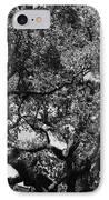 The Monastery Tree IPhone Case