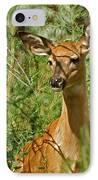 Whitetail Doe Painterly IPhone Case