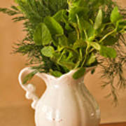 A Bouquet Of Fresh Herbs In A Tiny Jug Poster