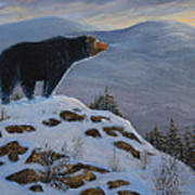 Last Look Black Bear Art Print