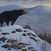 Last Look Black Bear Art Print