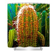 Backlit Cactus Shower Curtain