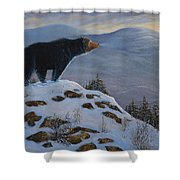 Last Look Black Bear Shower Curtain