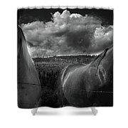 Us Shower Curtain by Jerry Cordeiro