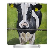 A Heifer Shower Curtain