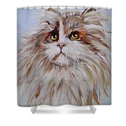 Cat Of Many Colors Shower Curtain