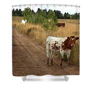 Colorado Calf Shower Curtain