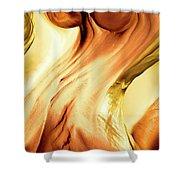 Curves Shower Curtain by Linda Sannuti
