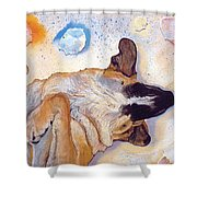 Dog Dreams Shower Curtain