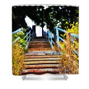 Manayunk Steps Shower Curtain by Bill Cannon