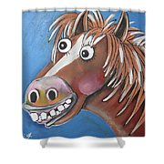 Mr Horse Shower Curtain