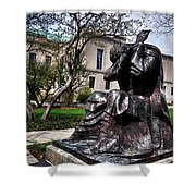 Rackham Statue Shower Curtain