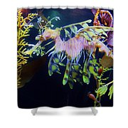 Sea Horse Parade 2 Shower Curtain