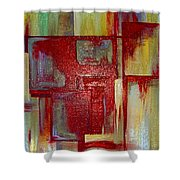 Sections Revisited Shower Curtain