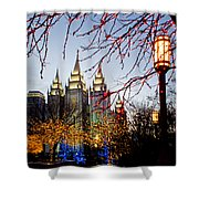 Slc Temple Lights Lamp Shower Curtain