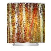 Strange Forest Shower Curtain