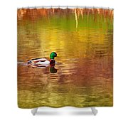 Swimming In Reflections Shower Curtain