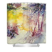 Watercolor  007 Shower Curtain
