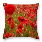Red Poppies 4 Throw Pillow