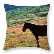 Altay Throw Pillow