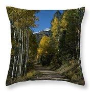 Aspen Lane Throw Pillow
