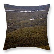 Banff National Park Forest Throw Pillow