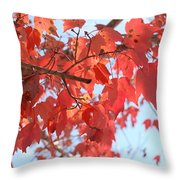 Brighten My Day Throw Pillow