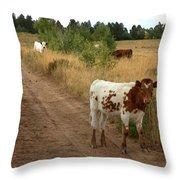 Colorado Calf Throw Pillow