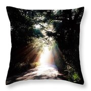 Country Road, Kenmare, Co Kerry, Ireland Throw Pillow by The Irish Image Collection
