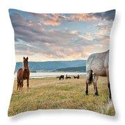 Curious Horses Throw Pillow