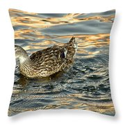 Duck Tracy Throw Pillow