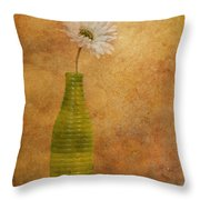 February 10 2010 Throw Pillow