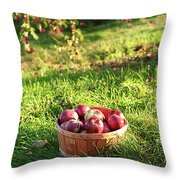 Freshly Picked Apples In The Orchard  Throw Pillow