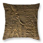 Hieroglyph At Edfu Throw Pillow by Darcy Michaelchuk