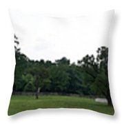 Historic Appomattox Panorama  Throw Pillow by Teresa Mucha