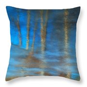 Ice Reflections Throw Pillow