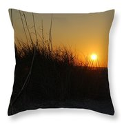 Late In The Day Throw Pillow
