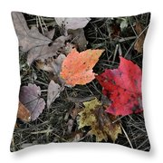 Leaves Are Falling Throw Pillow