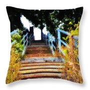 Manayunk Steps Throw Pillow by Bill Cannon