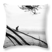 Monkey Alone On A Branch Throw Pillow