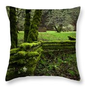 Mossy Fence 2 Throw Pillow by Bob Christopher